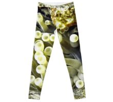 Yellow Sea Anemone Leggings