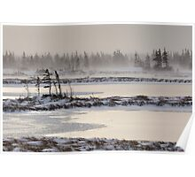 Frozen Landscape in Churchill, Manitoba Poster
