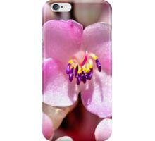 Lone Pink Flower Bloom  iPhone Case/Skin