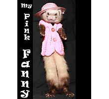 Rest in Peace Fanny Ferret. Jan 14, 2008 to Dec 11, 2013. Photographic Print