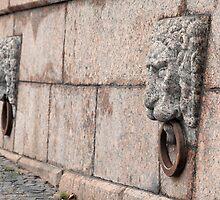stone lion by mrivserg
