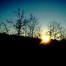 Morning Sun by PhosGraphe