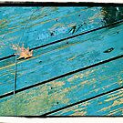 Plank by PhosGraphe
