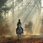 On a white horse a princess came my way ... by jchanders