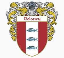 Delaney Coat of Arms/Family Crest Kids Clothes