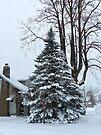 Snowy Tree by FrankieCat