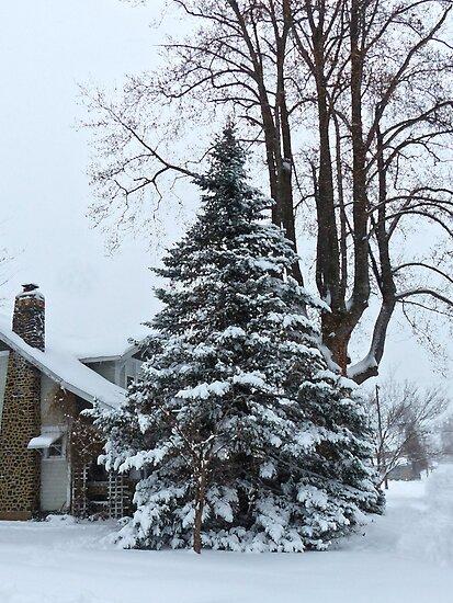 Snowy Tree by Susan S. Kline