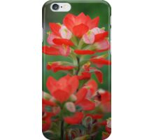 Indian Paintbrush iPhone Case/Skin