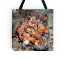 Decorator Crab with Anemone Riders Tote Bag