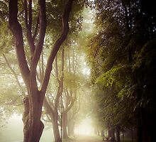 Foggy morning in the Nesvizh park by Sviatlana Kandybovich