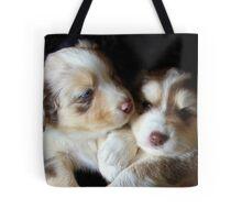 Adorable Australian Shepherd Puppies Tote Bag