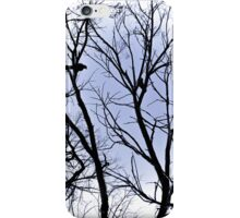 Winter Crows iPhone Case/Skin