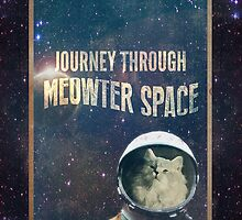 Journey Through Meowter Space by Darth-Sarah