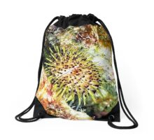 Jewell Sea Urchin on a Coral Reef Drawstring Bag