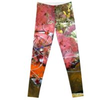 Banded Coral Shrimp on Colorful Coral Leggings
