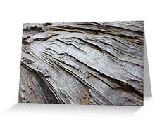 Wrinkled Bark on a Fallen Tree  Greeting Card