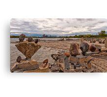 River sculptures Canvas Print