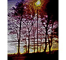 Sunset beyond the trees Photographic Print