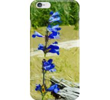 Carys Beardtongue Flower Abstract Impressionism iPhone Case/Skin
