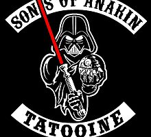 Sons Of Anakin by smartass