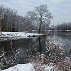 Winter In New Jersey by Lanis Rossi
