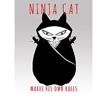 Ninja Cat Photographic Print