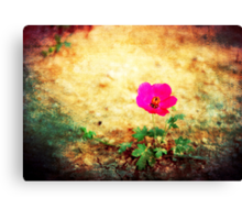 Earth Laughs in Flowers... Canvas Print