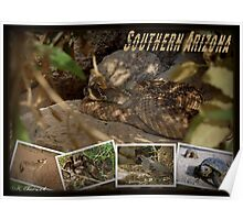 Southern AZ Critters Poster