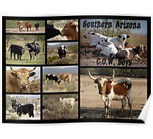 Southern Arizona C.O.W. Boys Poster