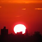 Autumn sunset in New York City  by Alberto  DeJesus