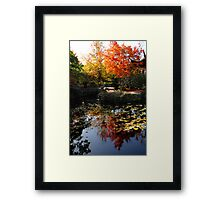 Chinese Garden in Autumn: Vancouver Framed Print