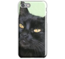 Relaxed Black Cat Portrait iPhone Case/Skin