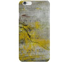 Crack and Lichen iPhone Case/Skin