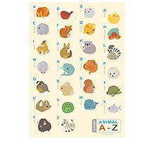 Animal Alphabet A-Z Photographic Print