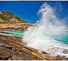 Lucky Bay by Paul Amyes