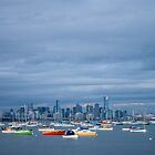 Hobsons Bay by Ray Warren