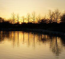 Golden and Peaceful - a Sunset on Lake Ontario in Toronto, Canada by Georgia Mizuleva