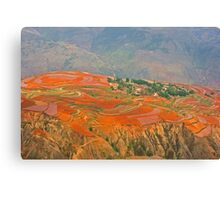 Red Land 03 Canvas Print