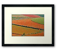 Red Land 05 Framed Print