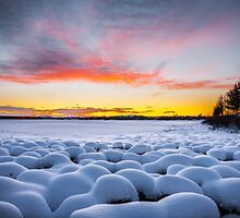 Marshmallows at dawn by Peter Blackwood