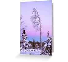 Arctic frost Greeting Card