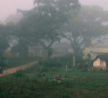 Mist.  by Michael Stocks