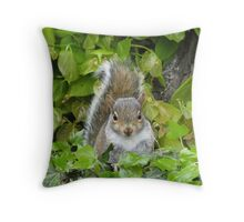Baby Squirrel 2 Throw Pillow