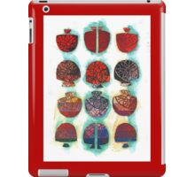 Multifaceted No.1 (Light, Time & Facade Series) iPad Case/Skin