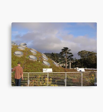 Spotted Hill Canvas Print