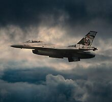 F16 Tiger by James Biggadike
