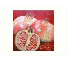 warm pomegranates Art Print