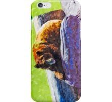 American Black Bear at Rest Abstract Impressionism iPhone Case/Skin