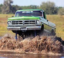 If it can't make it through the mud it ain't worth driving by Angela  Norton