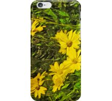 Arrowleaf Balsamroot Flower Abstract Impressionism iPhone Case/Skin